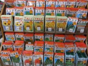 家庭菜園 種